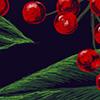 2013 Holiday Greeting