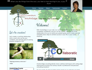Deluxe Interactive Serviceste reskinning for IntuitivEdge life coaching.